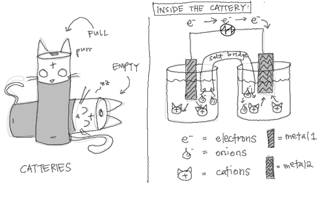 disclaimer: squirrel muffins is not responsible for any failures of electrochemistry exams