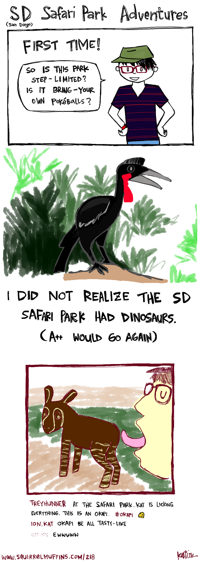 the Abyssinian Ground Hornbill is a really, really cool bird, but it would probably eat us all given the chance